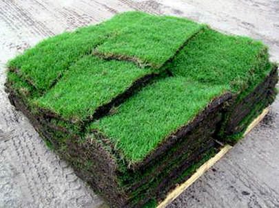 new pallet of grass freshly cut