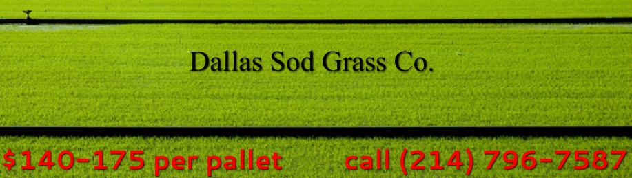 St  Augustine Grass Dallas TX - Dallas Sod Grass